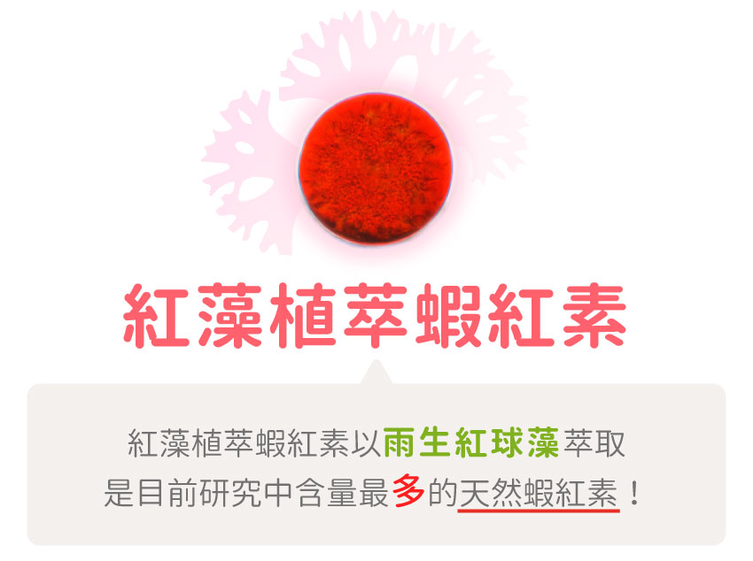 紅藻植萃蝦紅素,雨生紅球藻,含量最多,天然蝦紅素,蝦青素,葉黃素